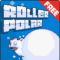 Roller Polar Project Banner